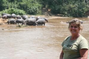 Camp site hippos