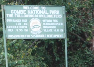 The boundary of the Gombe reserve