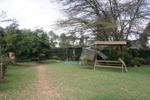 Jungle Junction Camp