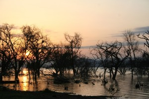 Lake Baringo Sunset