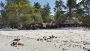 Mikadi Beach Dar