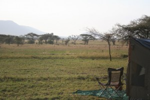 Serengeti Camp site views