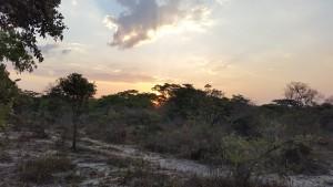 Gosho sunset